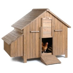 Most Trusted Website For Chicken Coops